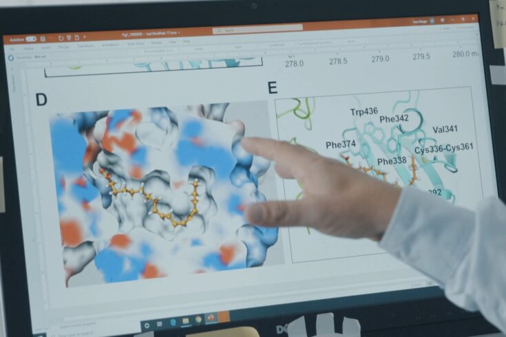Coronavirus structure on a computer screen