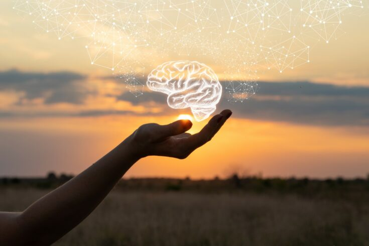 Hand shows the brain in the sun and sky