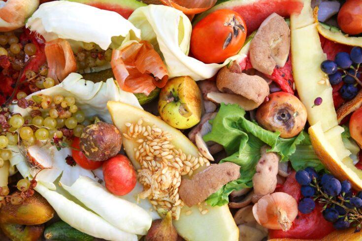 Fruit and veg food waste