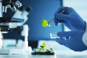 Can biotech help turn UK PLC green?