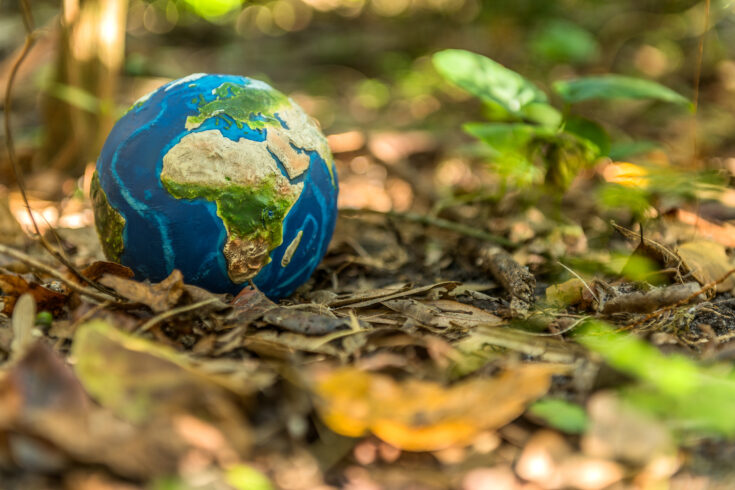 Conceptual image of planet Earth on the ground.