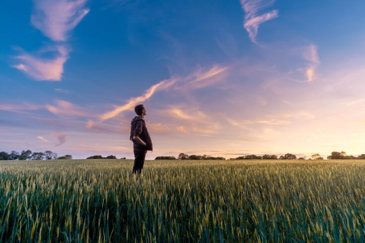 Man gazing at the sky at sunset in an open crop field