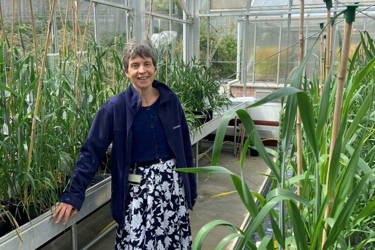 Fiona Gilzean