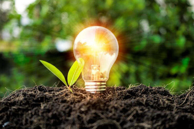 Lightbulb in soil and illuminating, with leaves