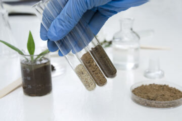 Laboratory assistant working with plants, different kinds of soil and sand, testing and analyzing results.